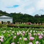 queens botanical garden
